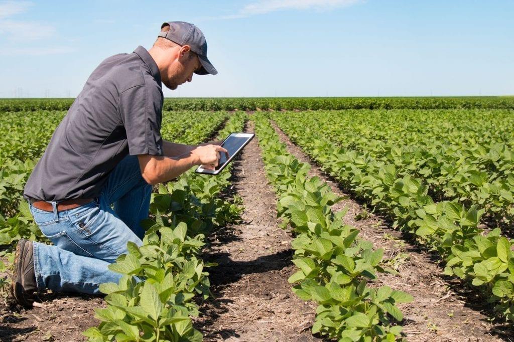 SoilCares-rolnik z tabletem - eridon