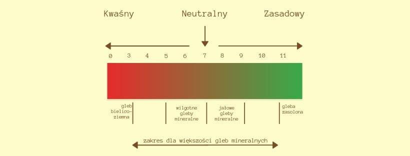 pH - pierwiastki w glebie